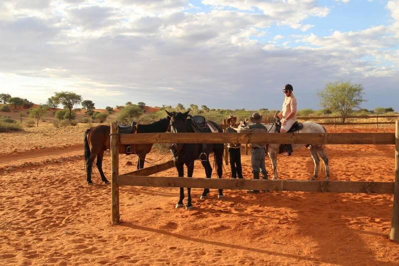 Bagatelle Kalahari Game Ranch Scenic View Low Bagatelle